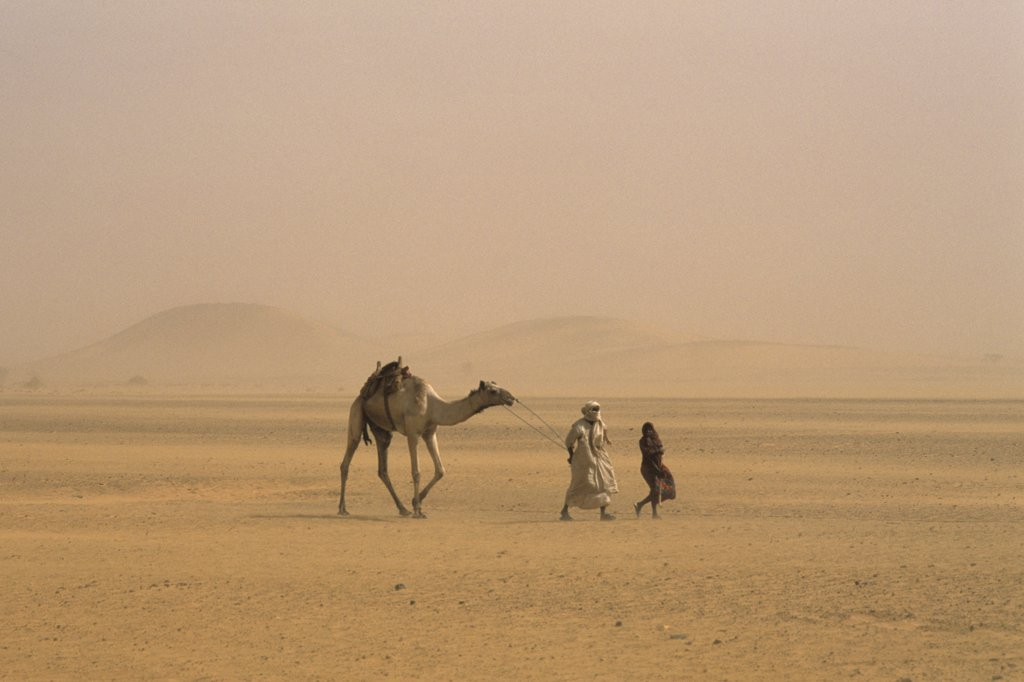 Stock Photo: 4292-122402 Africa, Sudan, Naga, nomads in the desert