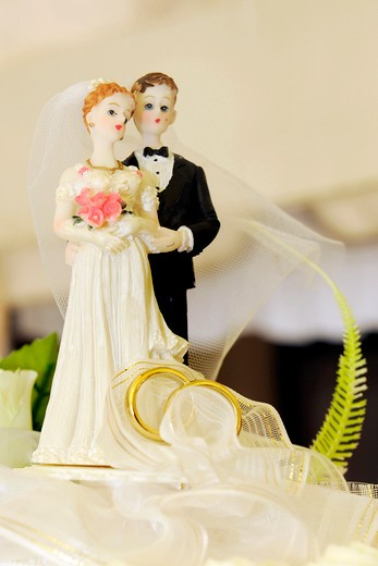 Stock Photo: 4292-124224 Bride and groom figurines