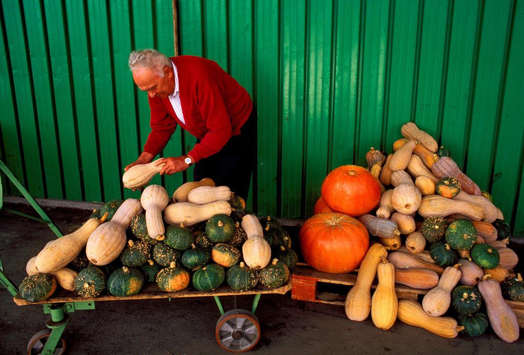 Italy, Emilia Romagna, Ferrara, Stall Market, Different Kinds of Pumpkins. : Stock Photo