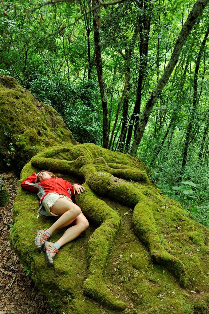 Italy, Lazio, Calcata, Opera Bosco, nature art exhibition : Stock Photo