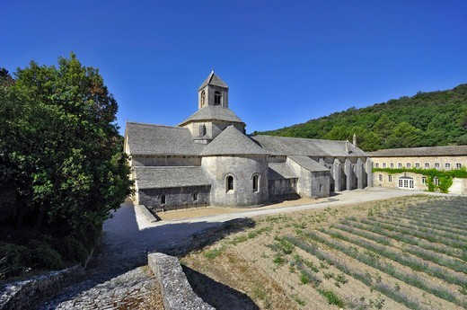 Stock Photo: 4292-141119 France, Provence, Gordes, Senanque abbey
