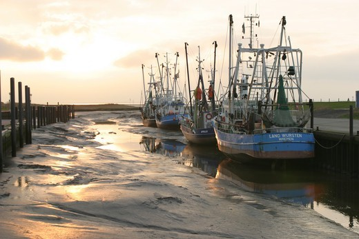 vessels in the port of Wremen ( Germany) at low tide : Stock Photo