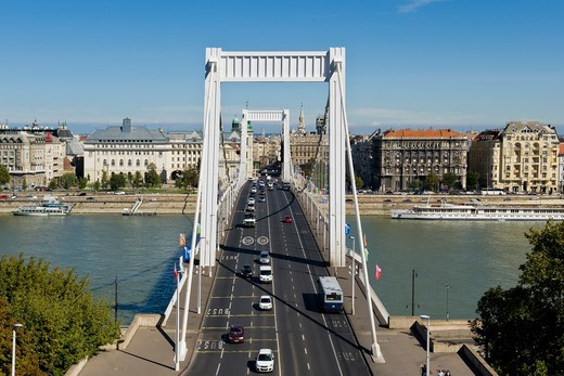 Stock Photo: 4292-154487 Hungary, Budapest, Elizabeth bridge