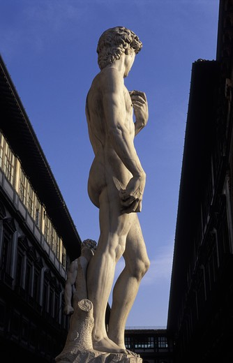Stock Photo: 4292-17600 Italy, Florence. David Statue
