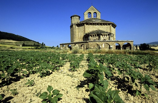 Stock Photo: 4292-18783 Europe, Spain, Los Arcos, Camino de Santiago, countryside