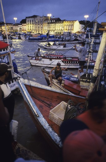 Brazil, Parà State, Belem, the fishing harbour : Stock Photo