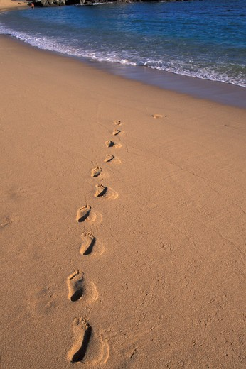 Footprints on the beach : Stock Photo
