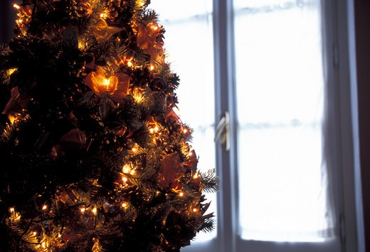 Christmas tree near a window : Stock Photo