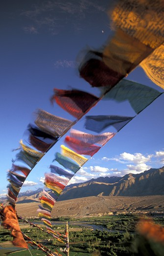 Stock Photo: 4292-33278 India, Jammu and Kashmir, Ladakh, Leh, buddhist prayer flags at Spitok Monastery