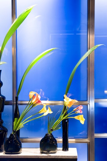 Stock Photo: 4292-3348 England, London, flower pots in the Hakkasan restaurant