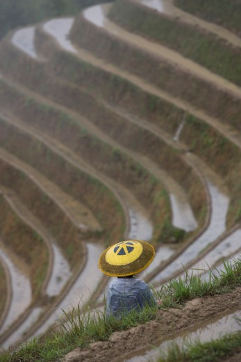 China. Guangxi Province. Guilin. Longsheng terraced ricefields : Stock Photo