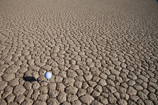 USA, California, Death Valley, tee on cracked earth : Stock Photo