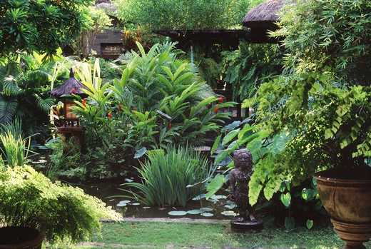 Stock Photo: 4292-40954 Indonesia, Bali, tropical garden