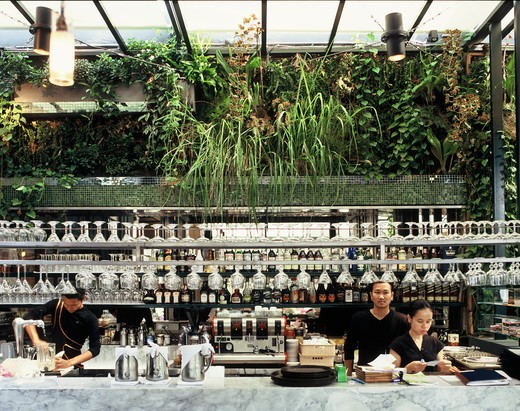 Bar with plants : Stock Photo