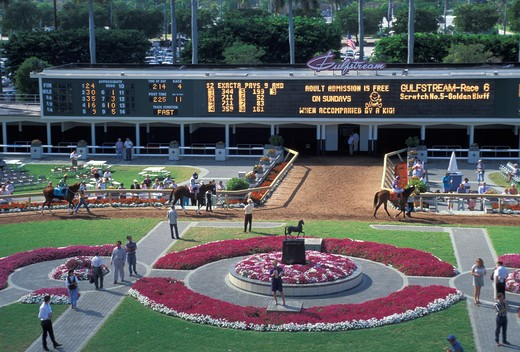 Stock Photo: 4292-47211 Gulfstream racetrackMiami