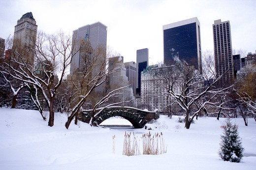 Stock Photo: 4292-47857 USA, New York City: Central Park in winter