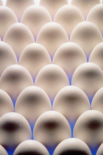 Stock Photo: 4292-49215 Eggs