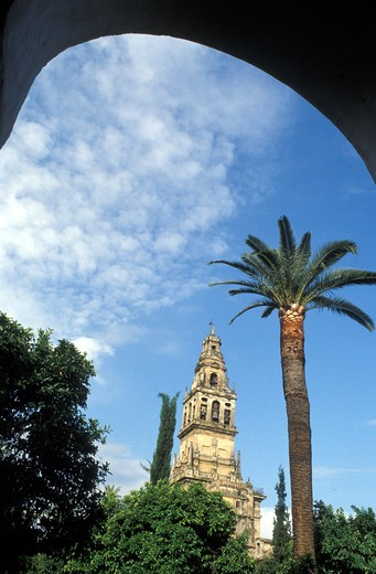 Stock Photo: 4292-49282 Spain, Andalusia, Cordoba, La Mezquita Cathedral