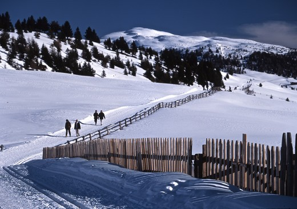 Italy, Alto Adige, Val Luson in the Rodengo Alps : Stock Photo