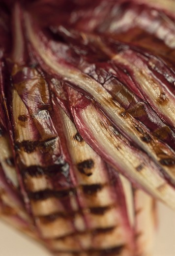 Grilled 'Radicchio'of Treviso : Stock Photo