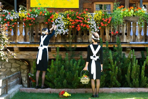 Stock Photo: 4292-53981 Two waitress picking up flowers