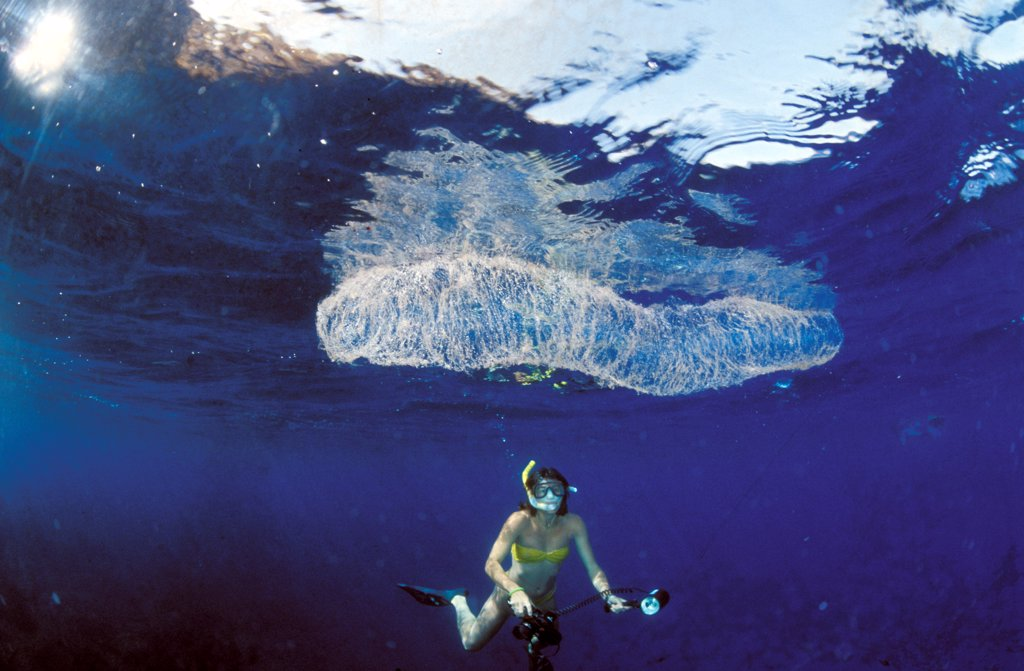 Stock Photo: 4292-61170 Scuba diver and jellyfish