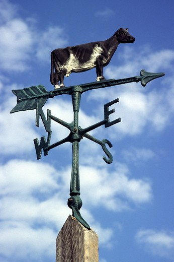 Weathervane : Stock Photo