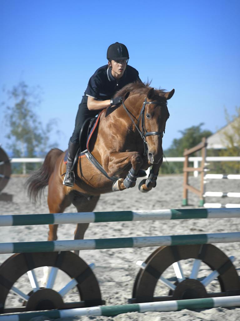 Teenager horse jumping : Stock Photo