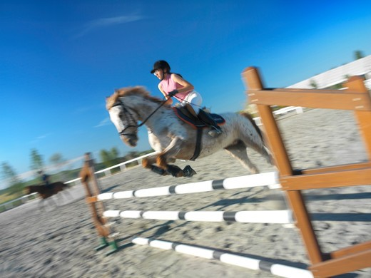 Teenager horse jumping : Stock Photo