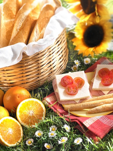 Buffet laid on picnic blanket : Stock Photo