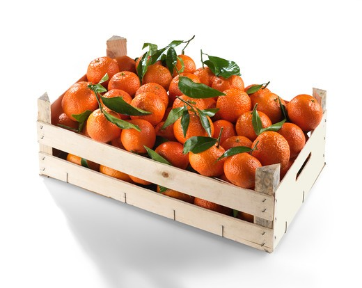 Orange in a crate : Stock Photo