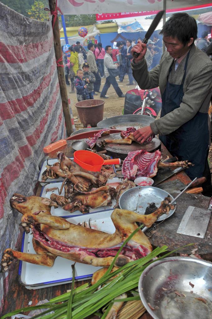 Asia, China, Guizhou Province, Guyang Area, Gulong Village, Lusheng Festival, Miao minority : Stock Photo
