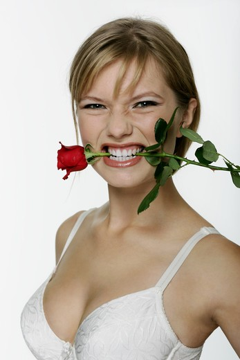 Woman with rose in teeth : Stock Photo