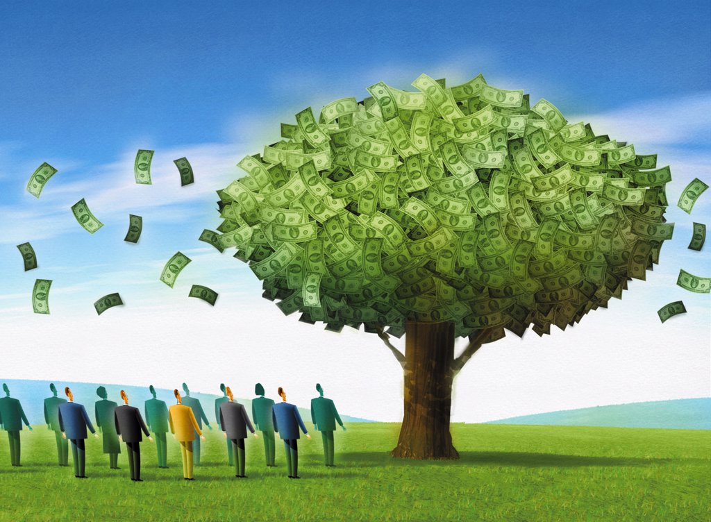 Money tree : Stock Photo
