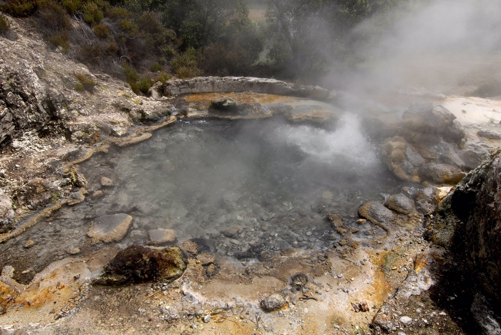 Stock Photo: 4292-77668 Portugal, Azores, Sao Miguel Island, Furnas, thermal spring