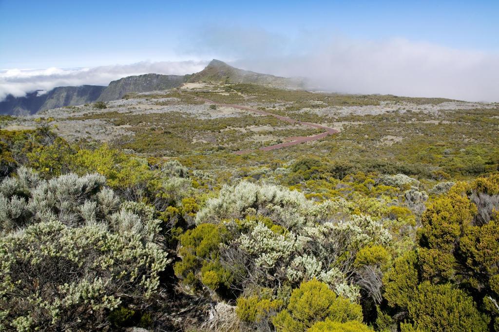 Stock Photo: 4292-83554 Reunion Island, landscape
