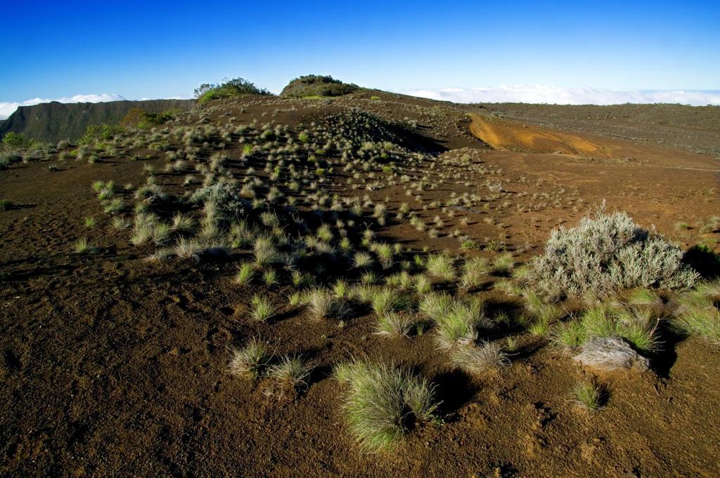 Reunion Island, Sand plain near Piton de la Fornaise volcano : Stock Photo