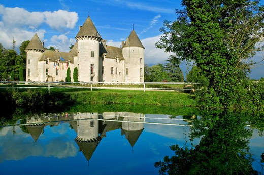 France, Bourgogne, Savigny Castle : Stock Photo