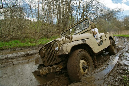 Stock Photo: 4292-84159 Four Wheel Drive Jeep in the Woods