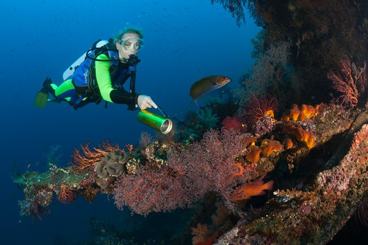 Stock Photo: 4292-86656 Scuba diver examines ship wreck Liberty, Bali, Tulamben, Indian Ocean, Indonesia