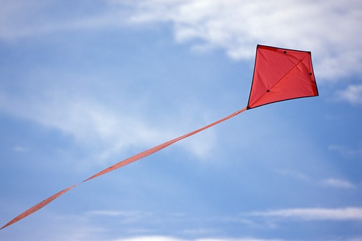 Red kite flying : Stock Photo