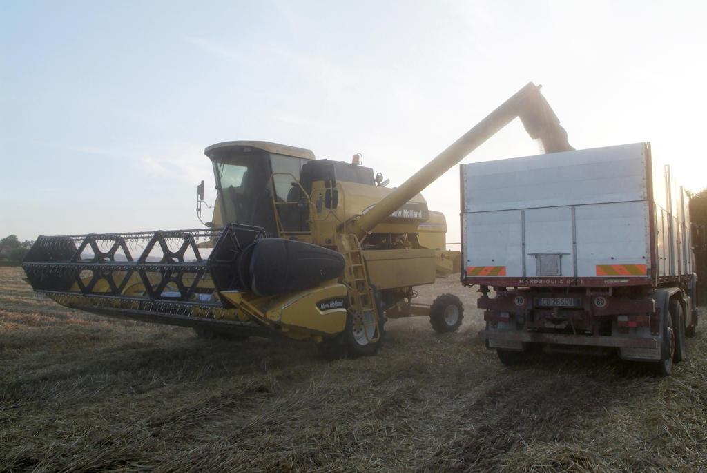 Stock Photo: 4292-90398 Threshing Wheat