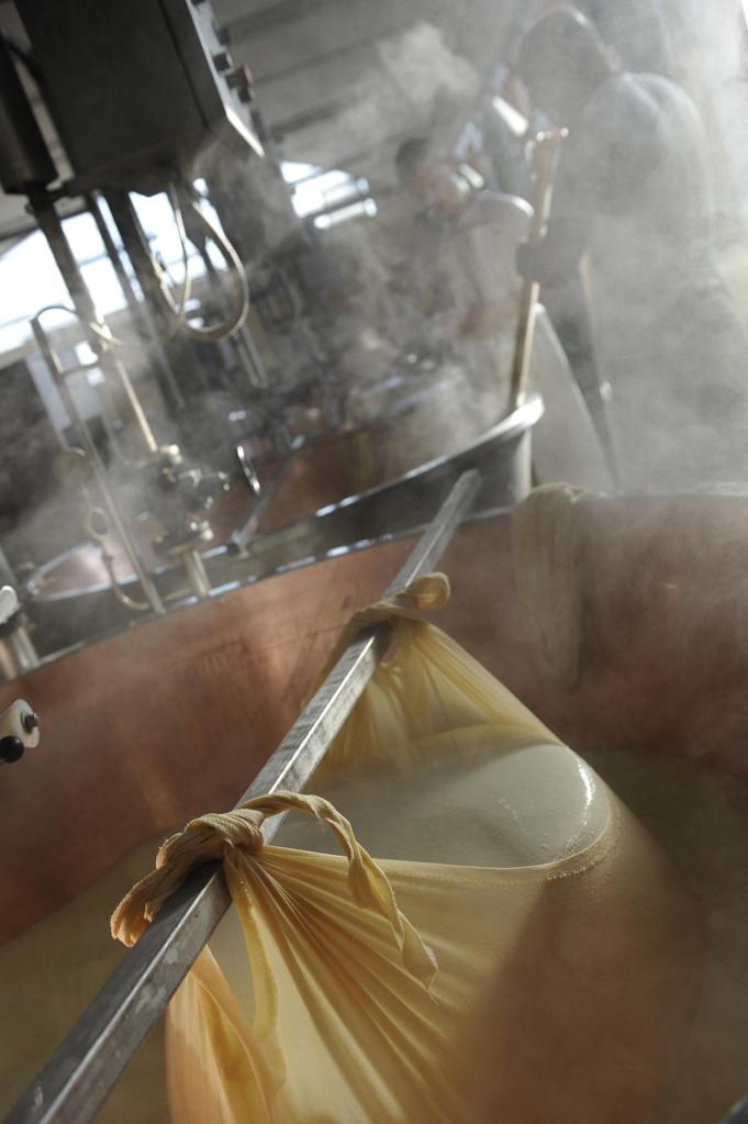 Stock Photo: 4292-90555 Italy, Emilia Romagna, Spilamberto, Making of Parmesan cheese