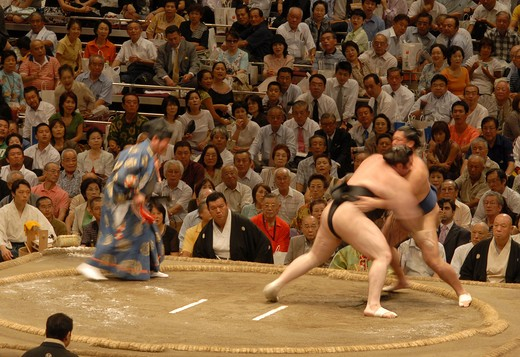 Stock Photo: 4292-90987 Japan, Tokyo, two Sumo wrestlers during competition