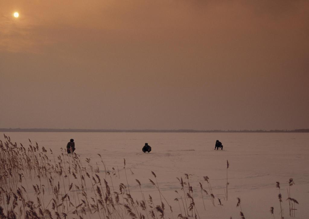 Stock Photo: 4292-91338 Europe, Estonia,Baltic, Tallinn,the frozen lake, white fishing