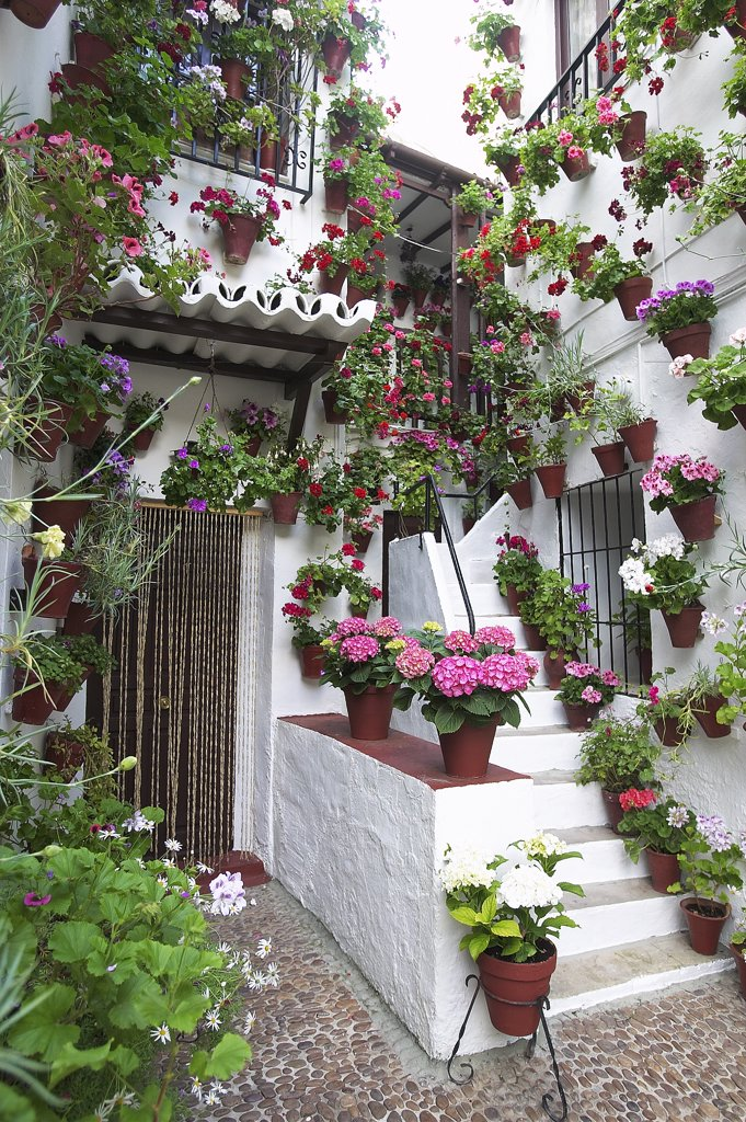 Stock Photo: 4292-91777 Spain, Cordoba, flowers on house balcony