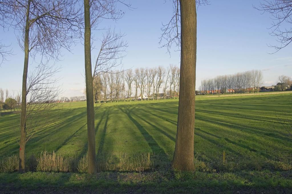 Stock Photo: 4292-91831 Belgium, West Flanders, landscape