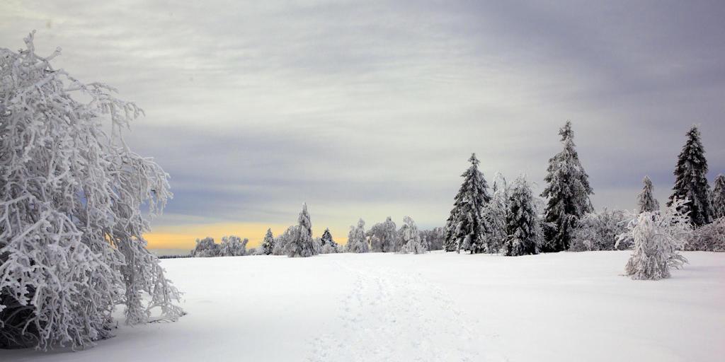 Stock Photo: 4292-92975 Belgium, winter scene