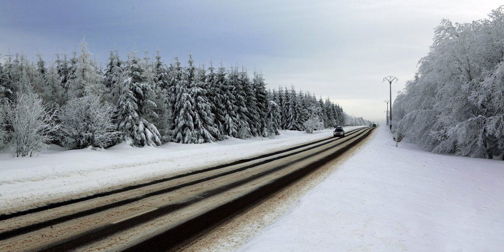 Belgium, road in the forest in winter : Stock Photo