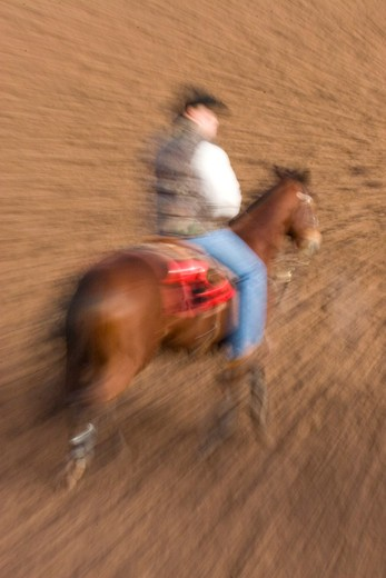 Stock Photo: 4292-99663 Rodeo cowboy on horse,